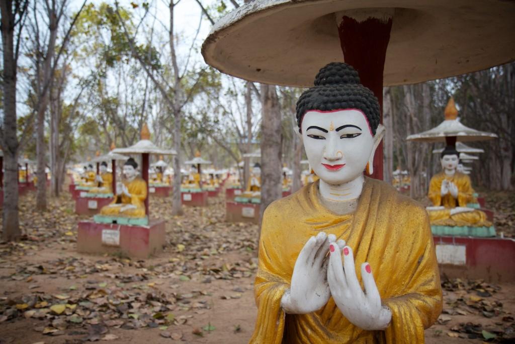 Buddhas. Lots of them